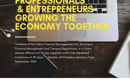 Professionals and Entrepreneurs Growing the Economy Together