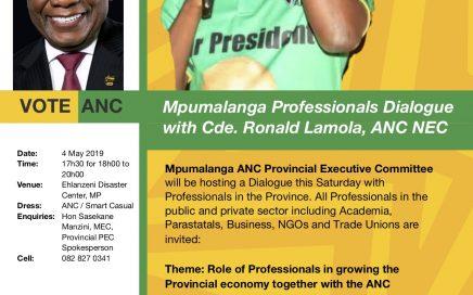 Mpumalanga Dialogue with Professionals